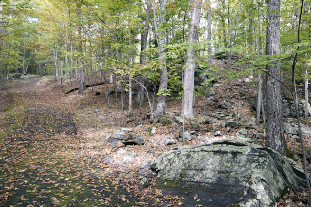 hiking trails and picnic tables